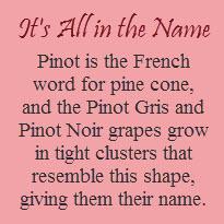 pinot2