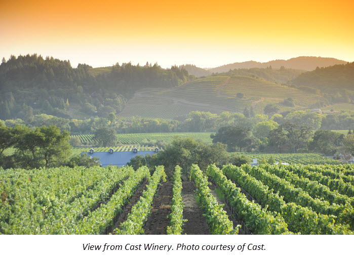 Five Healdsburg Wineries to Visit