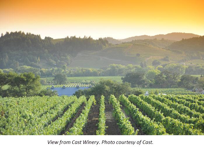 Five Healdsburg Wineries toVisit