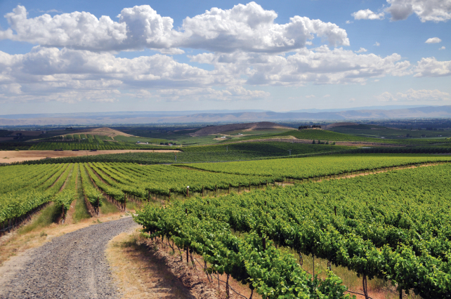 Discovering Yakima Valley in 4Days